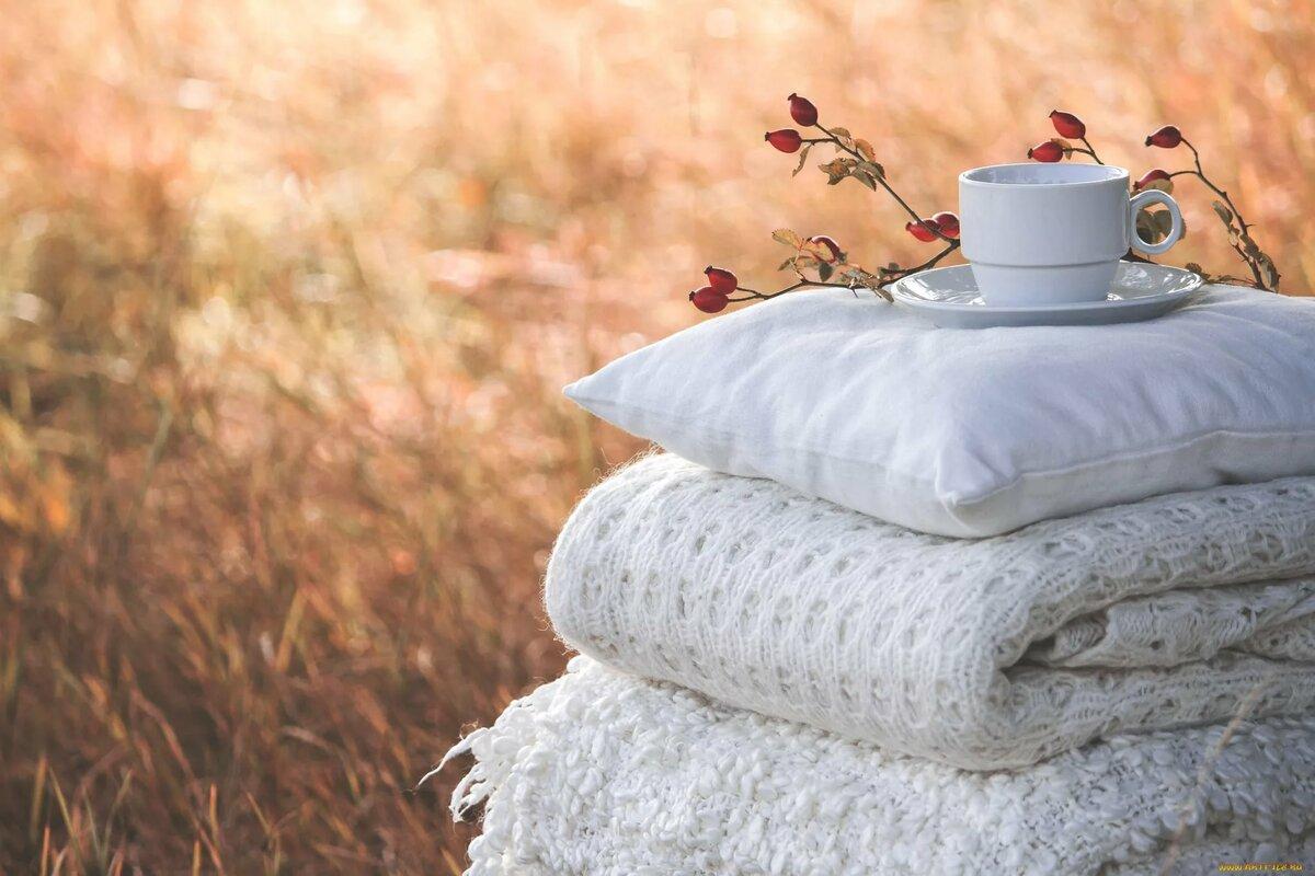 выбирают картинки осенний день одеяло кофе героине просыпается новое