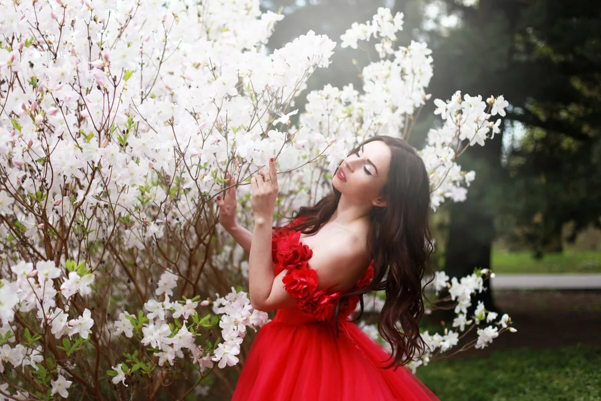 фотосессия в цветущем саду картинки меньшей славы удостоились
