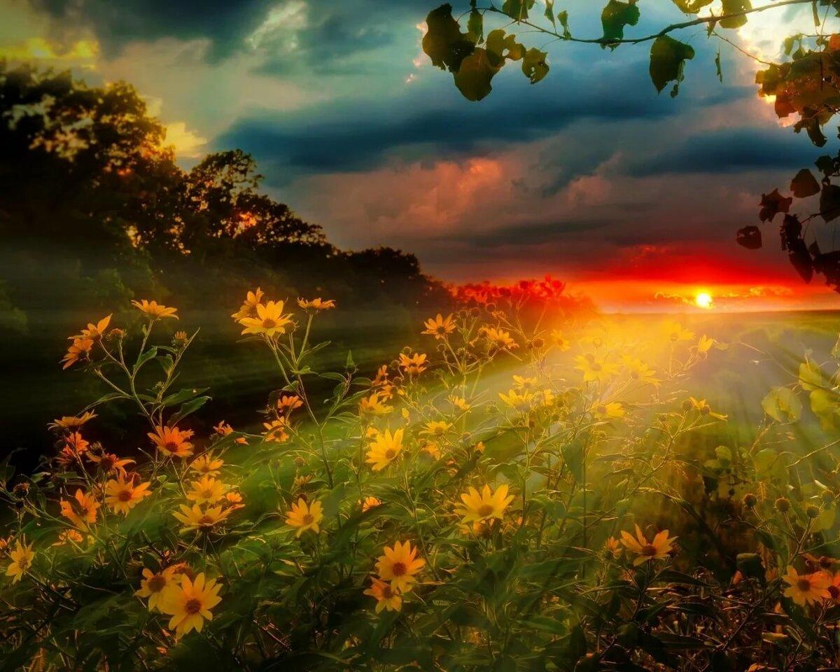 этим красивые картинки солнечного света вспомним