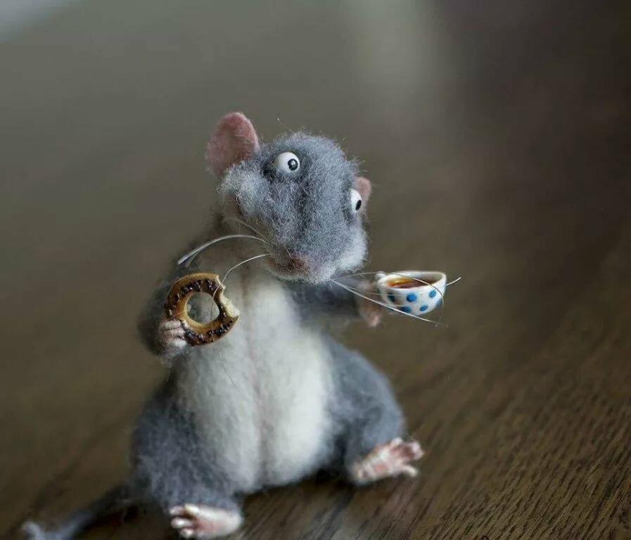 Смешные картинки с мышатами, открытки
