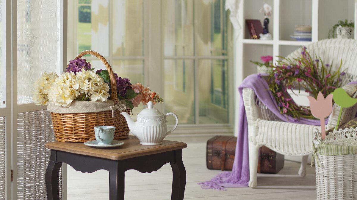 Цветов санкт, цветок для домашнего уюта