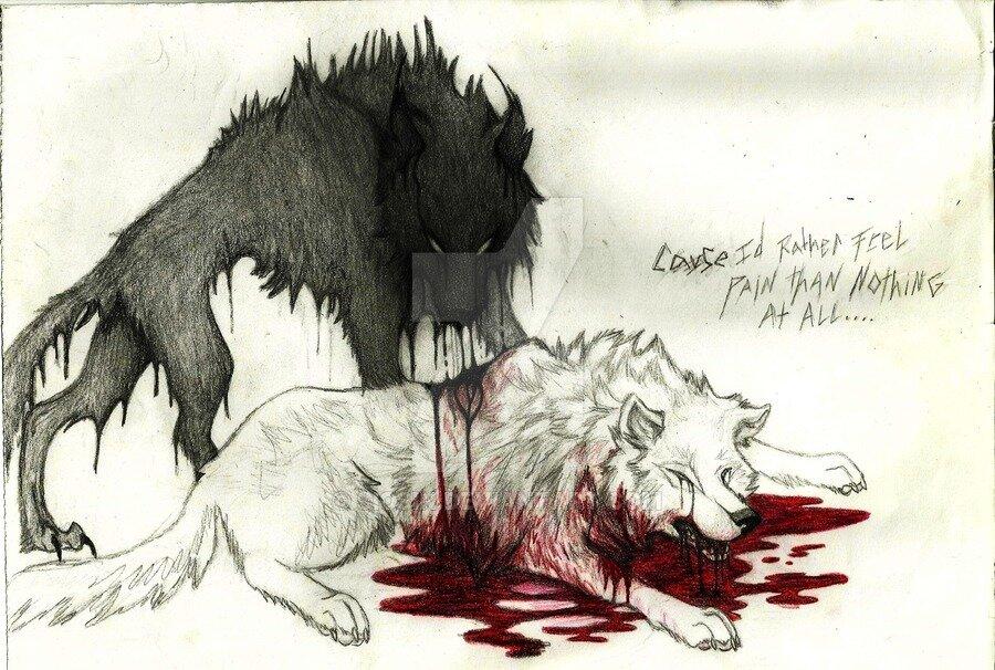 местные картинки раненых волков рыжей