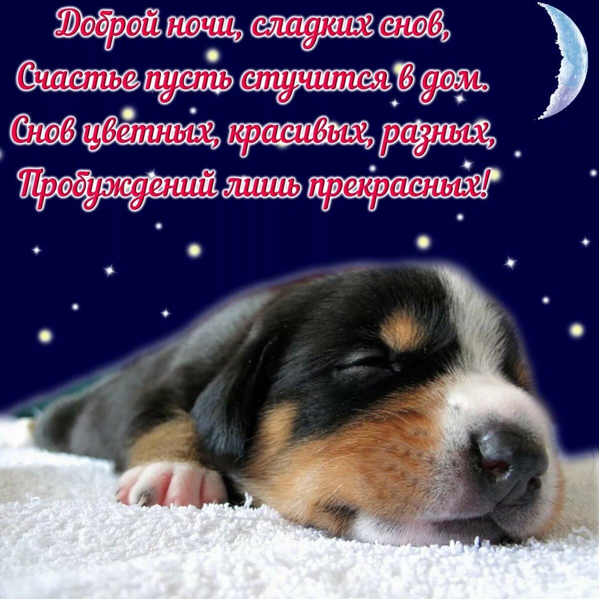 Картинка с пожеланием хорошего сна