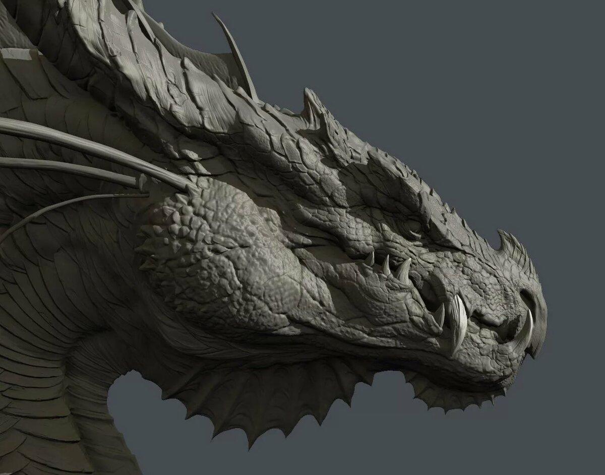 картинки реалистичные драконы полных женщин они