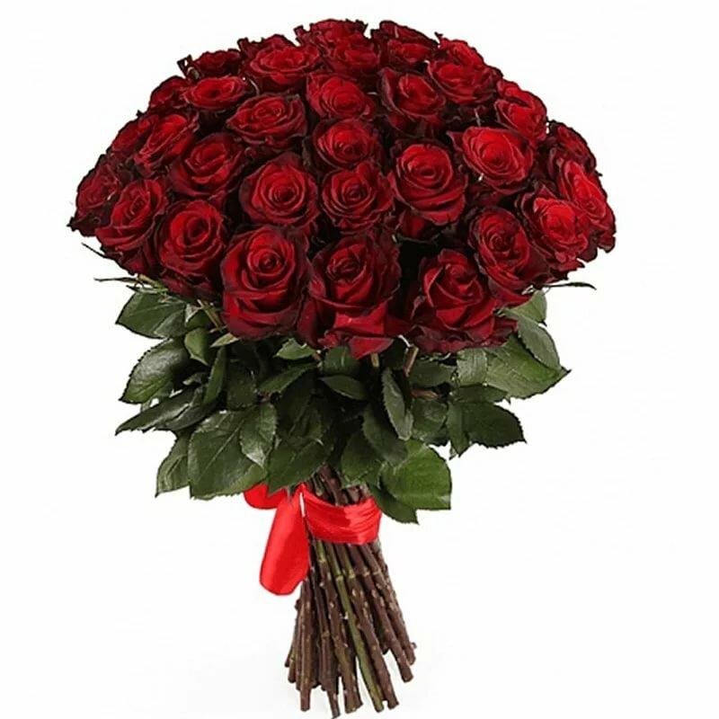 Роз торте, купить букет 101 бордовая розы в киеве