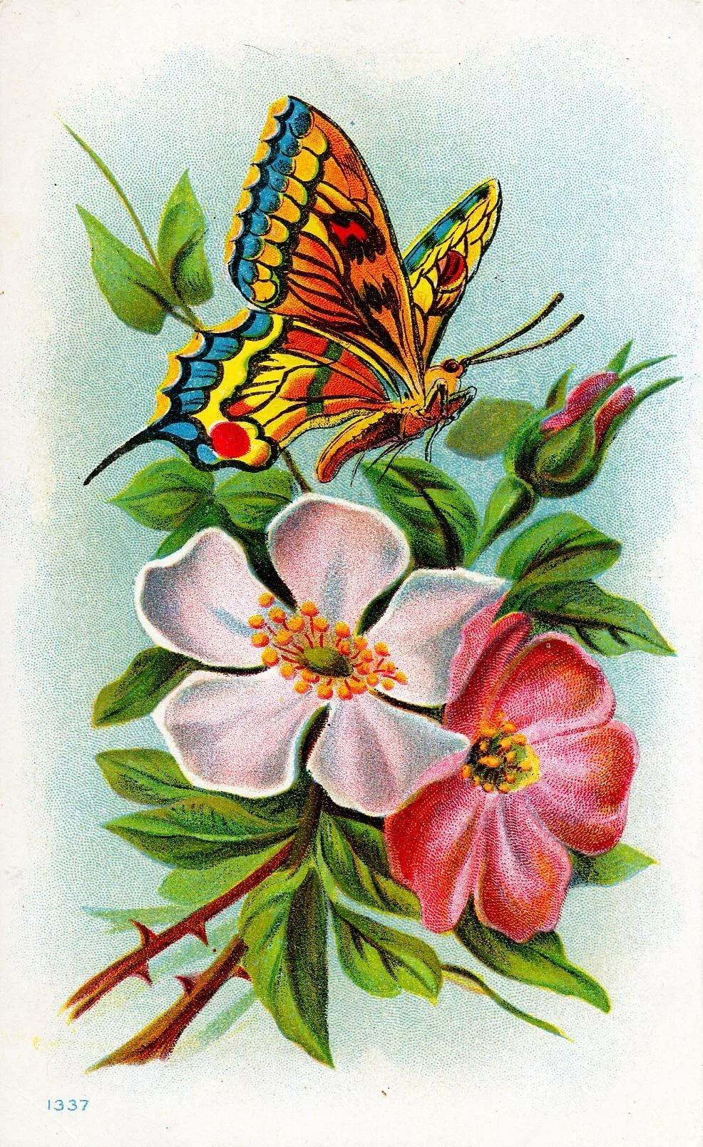 Открытка бабочка и цветок, качелях