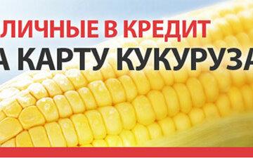 микрозайм кукуруза онлайн срочно
