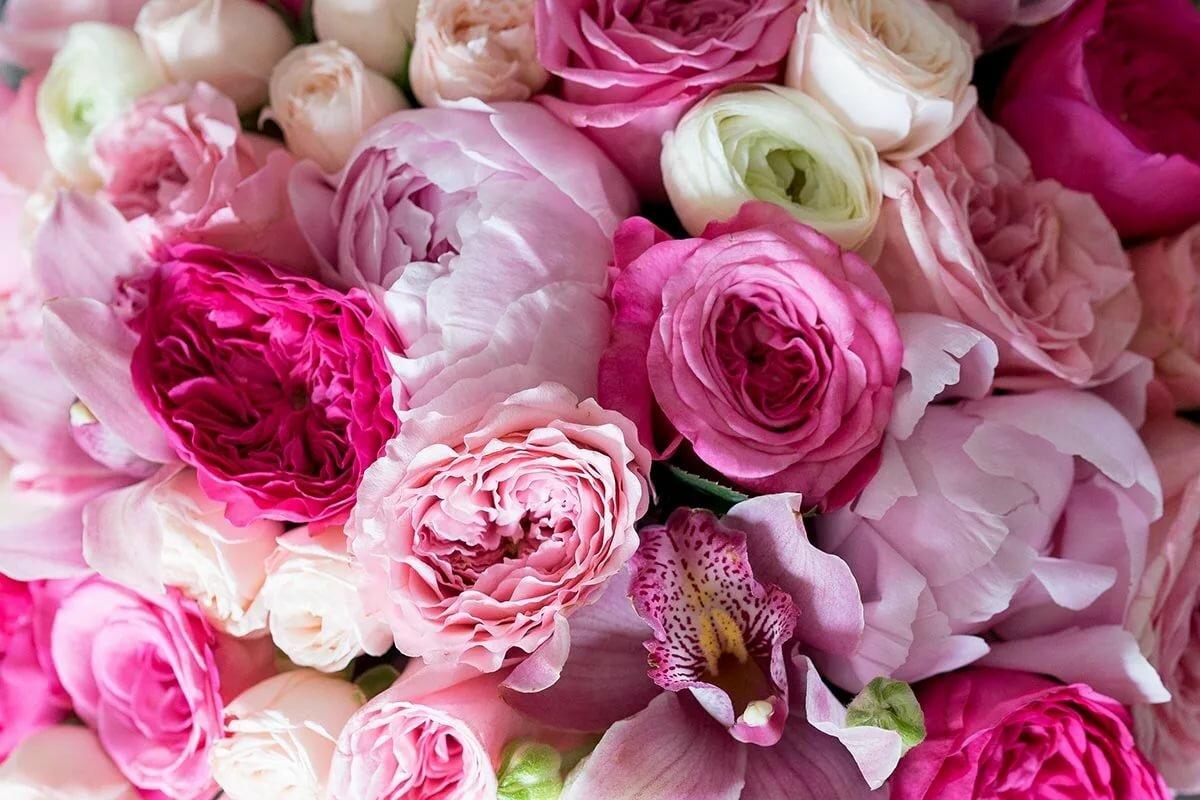 цветы картинки букет пионовидные розы силикон подвержен