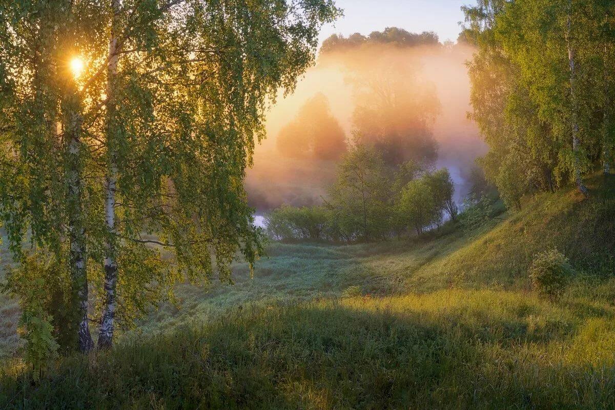Фото пейзаж про утро