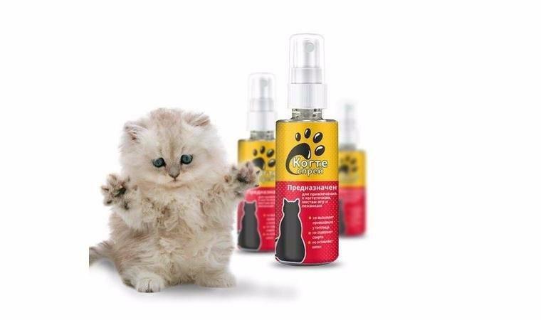 Когтеспрей - спрей для кошек в Ухте
