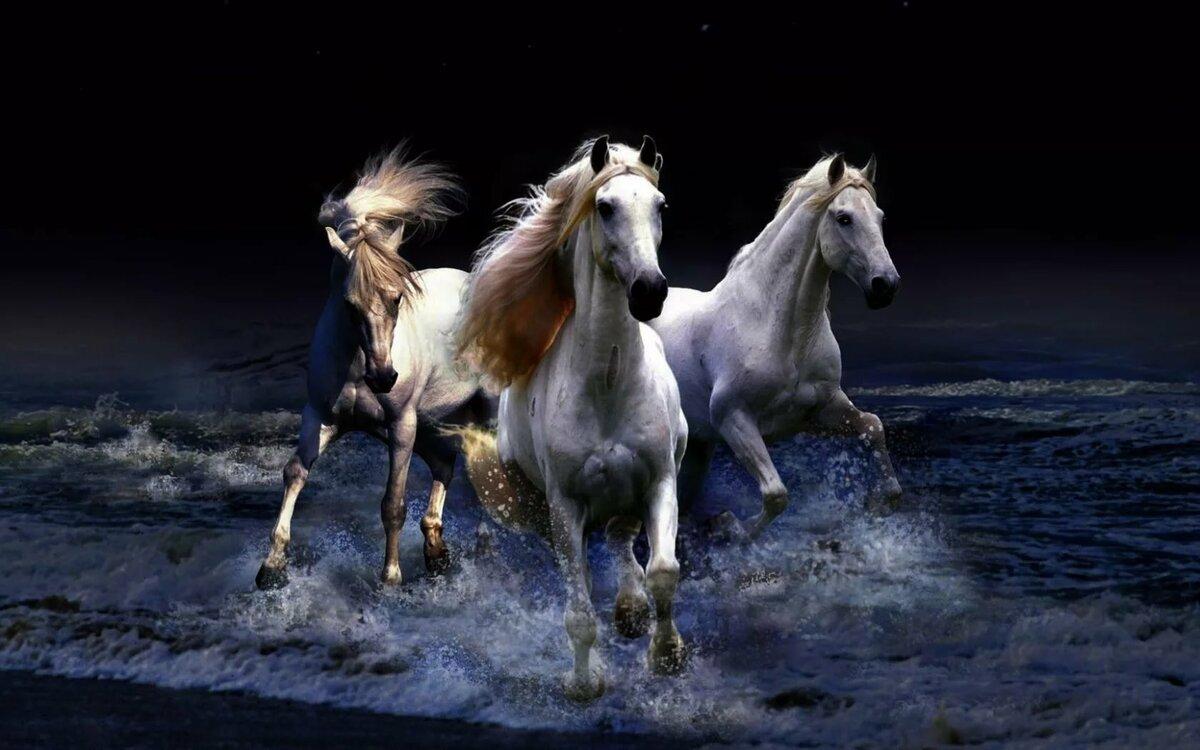 Картина с лошадьми что означает варенья