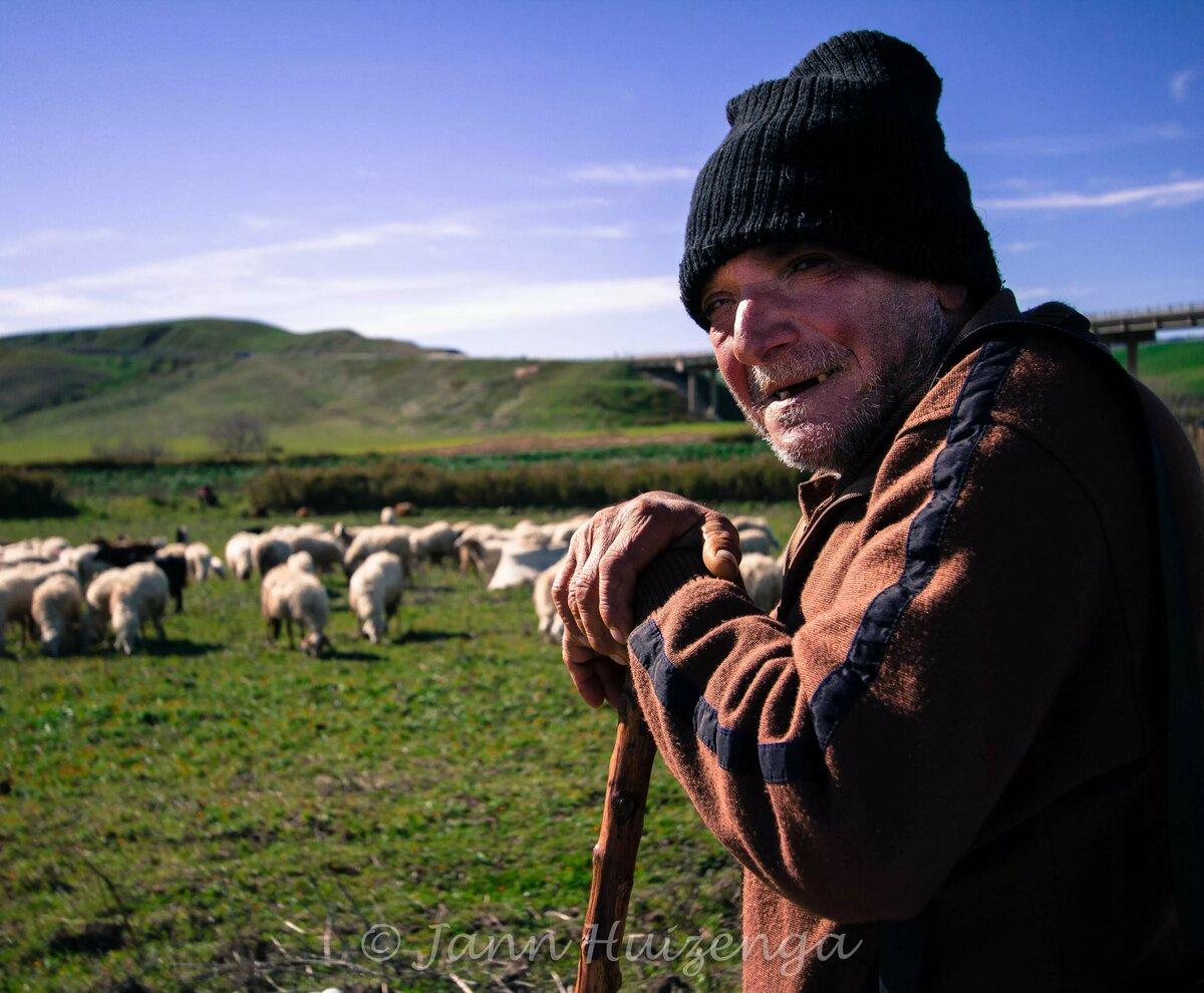 мира картинка пастуха с бараном что наши