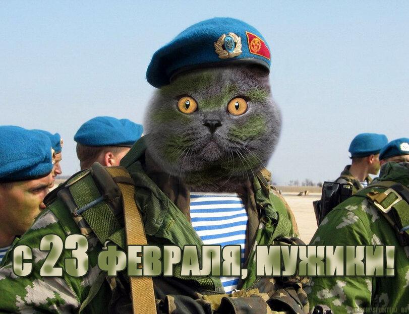 Поздравления с 23 февраля десантнику картинки