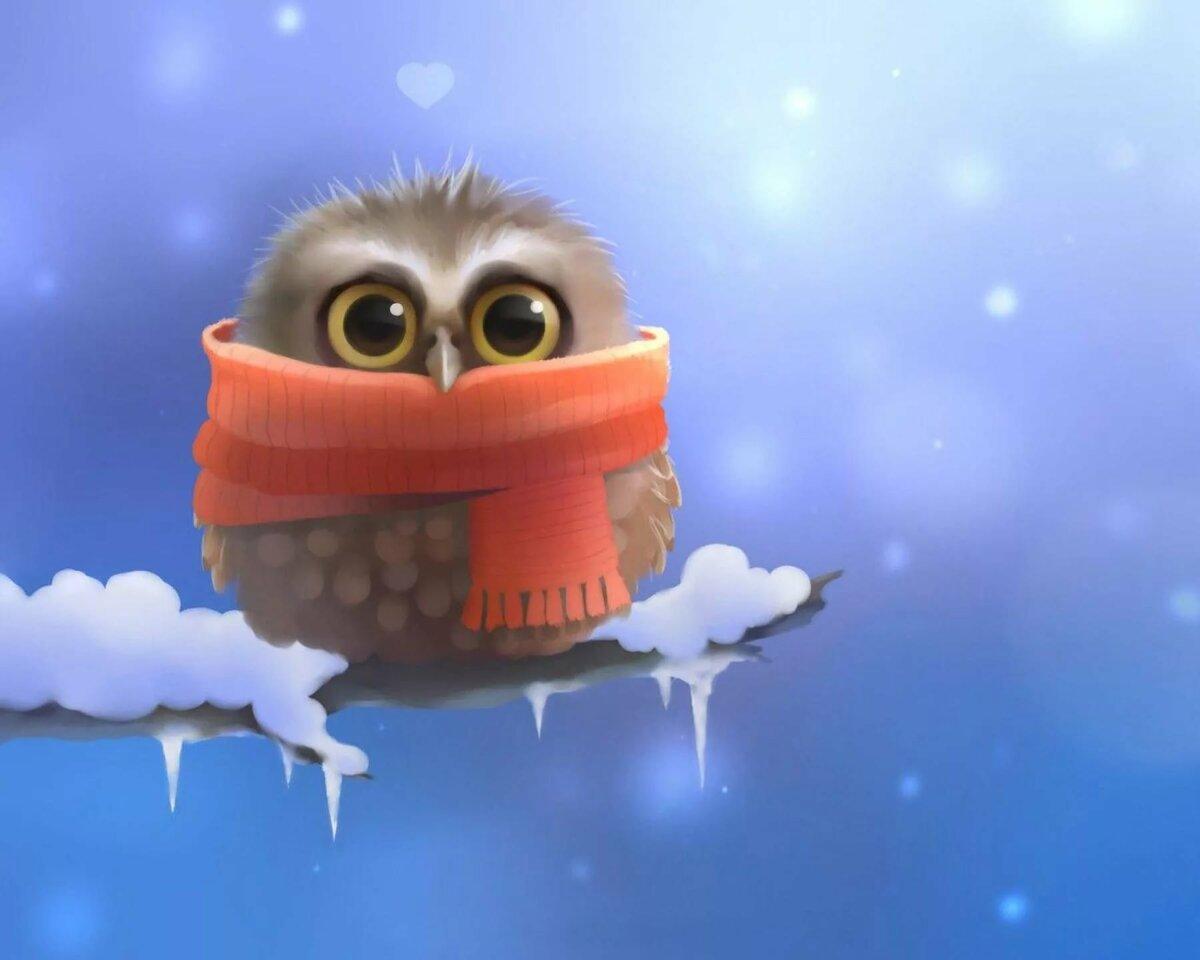 Зима пришла картинки красивые с надписью, утро