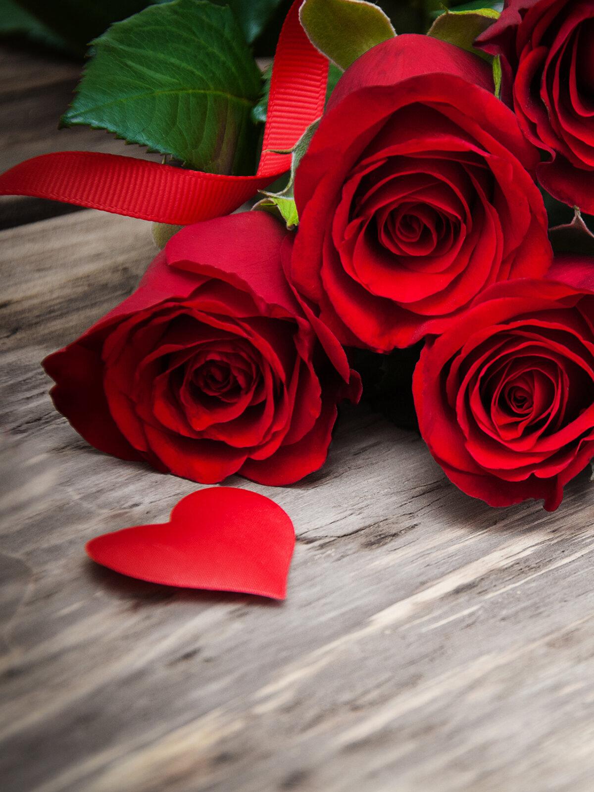 Розы картинки на телефон, наслаждайся жизнью-она прекрасна