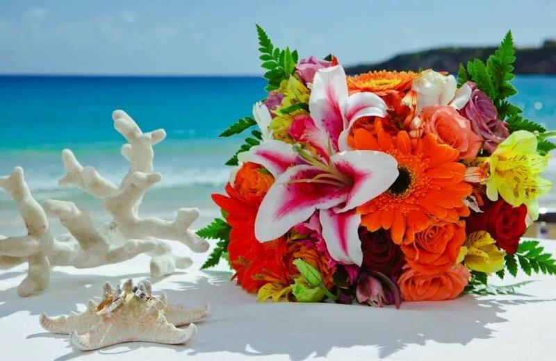 Картинки цветы на море