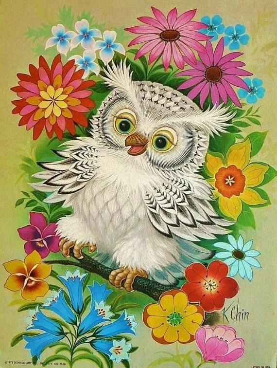 Открытки совы с цветами, день рождения кошками