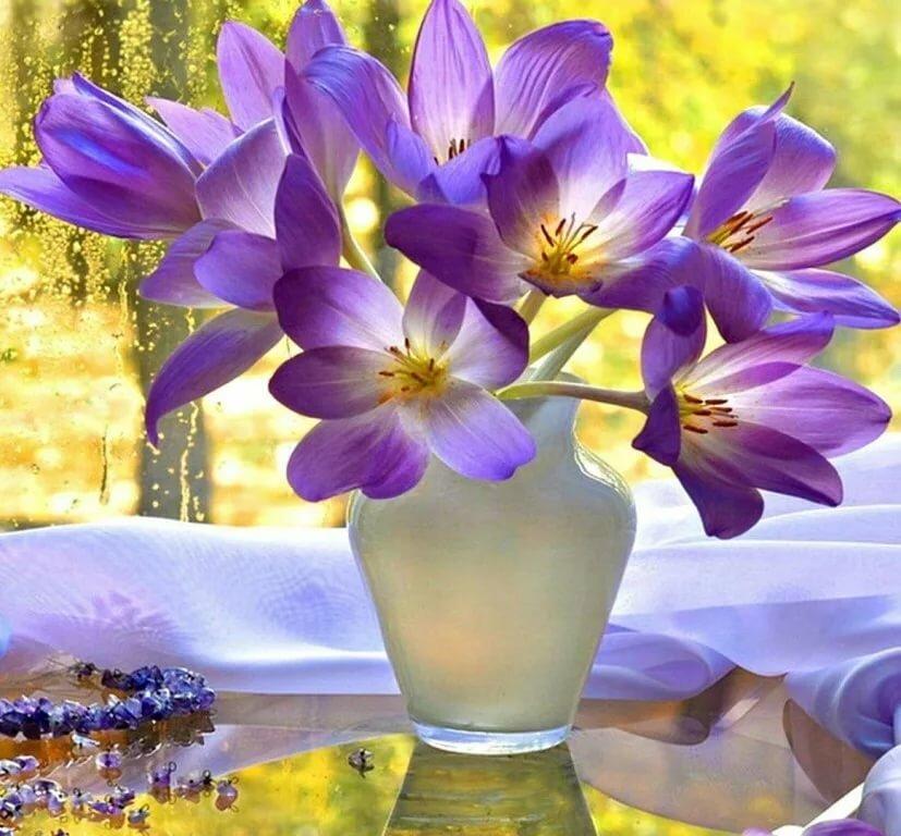 Открытки с добрым утром и прекрасным настроением природа