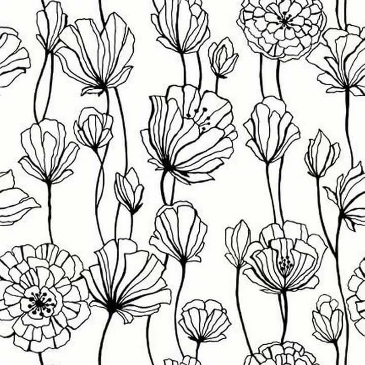 Цветы черно белые картинки