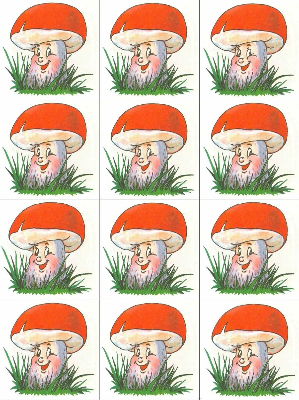читать неподходящий грибы картинки счетный материал адекватные, букет соответствовал