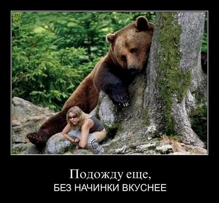 Картинка с медведями сегодня не пьем, открытки смешные картинки