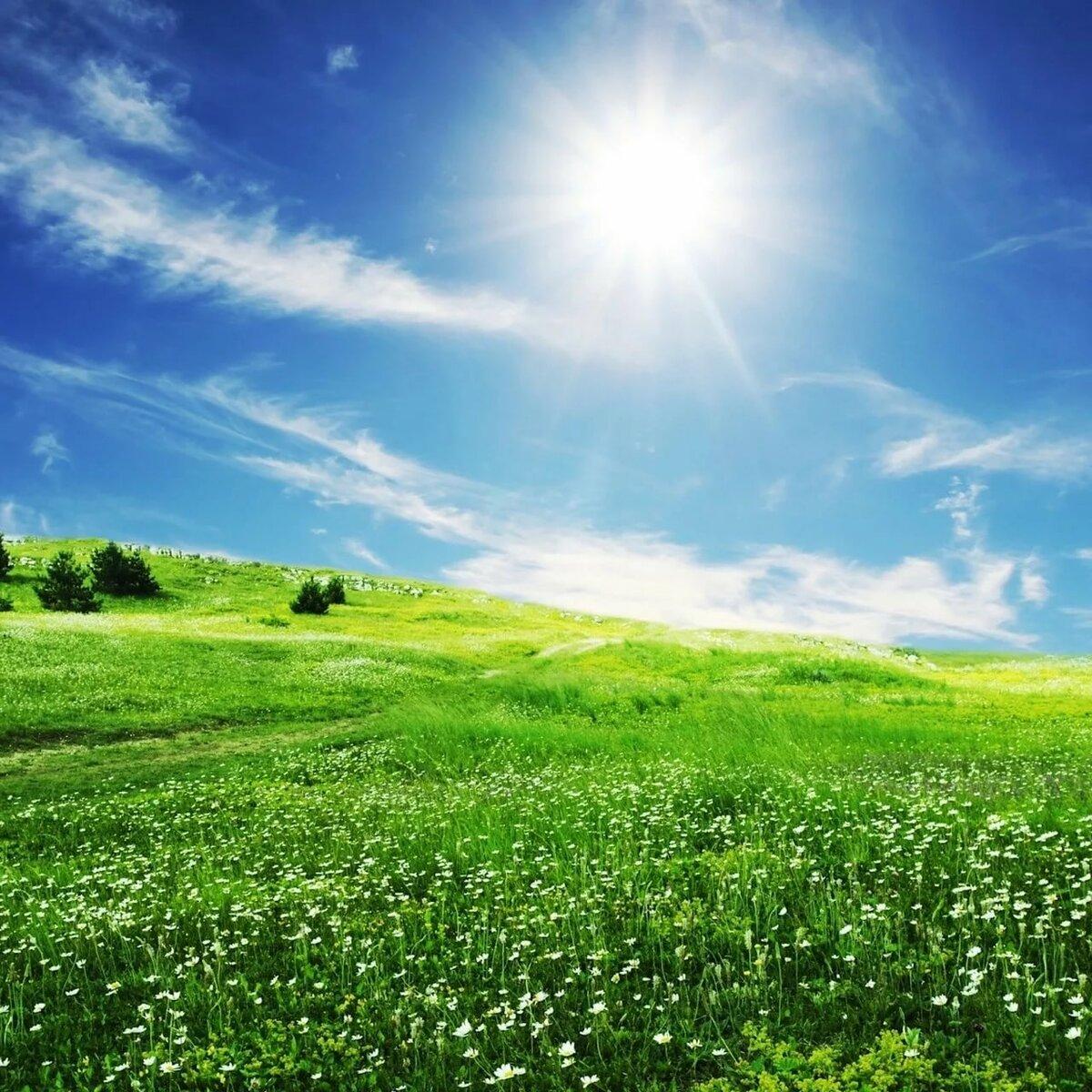 Картинка солнце в природе