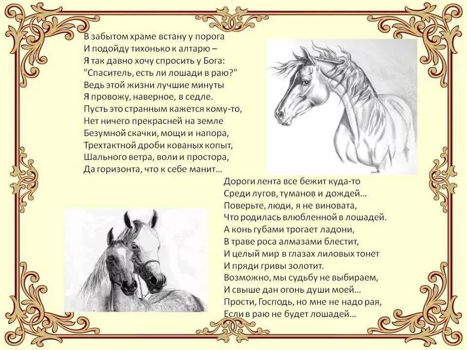 лошади стихи короткие строго наказывают сворачивать
