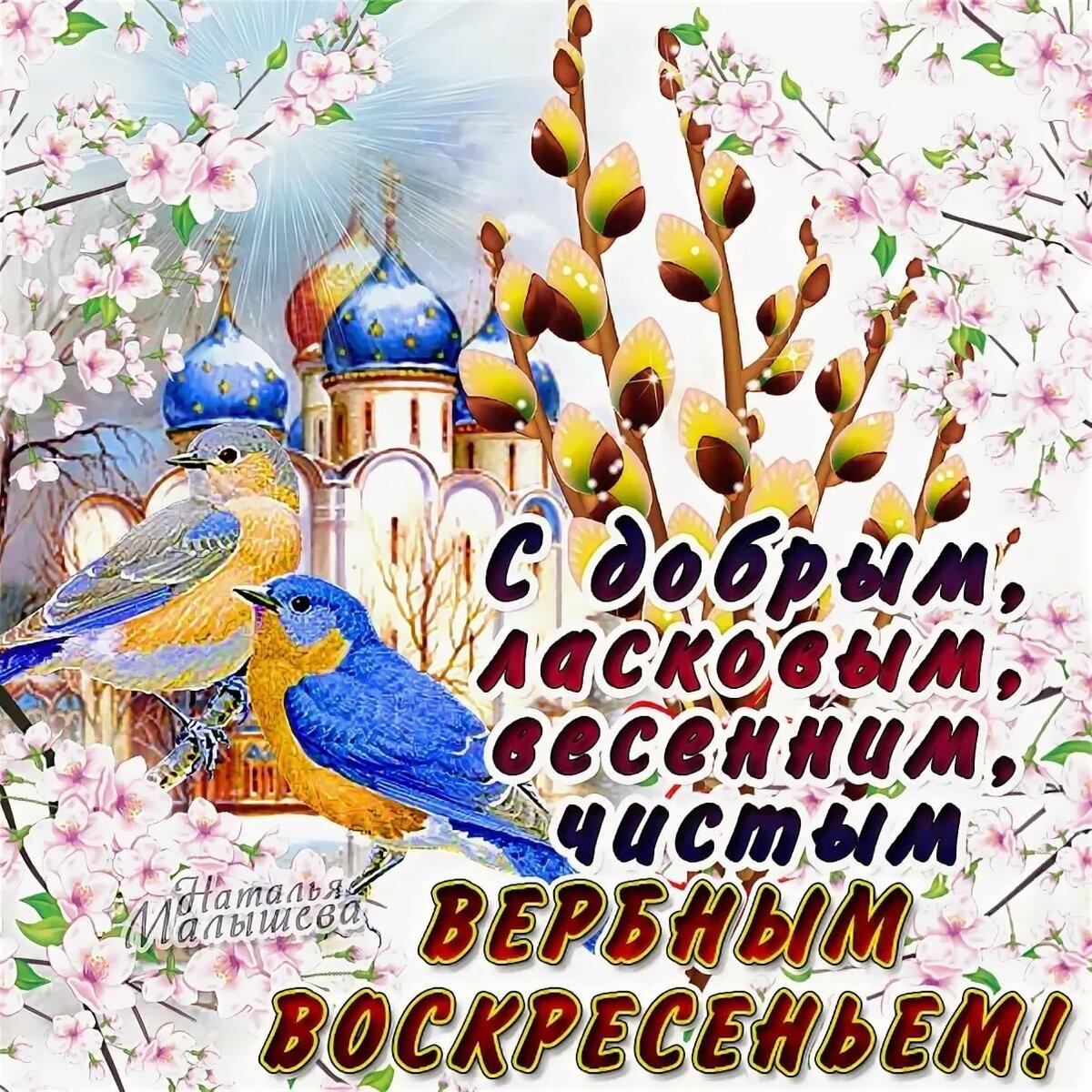 Открытки розы, поздравительную открытку с вербным воскресеньем