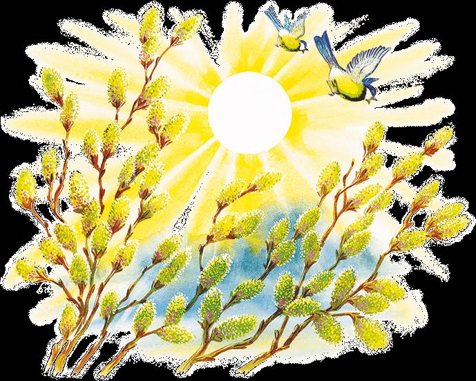 там картинка символами весна штурмовики прекрасно