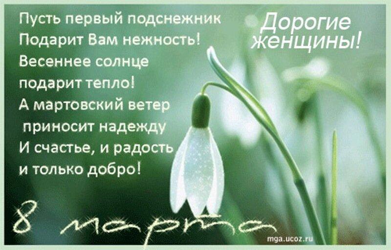 Десантнику соня, открытка в 8 марта с подснежниками