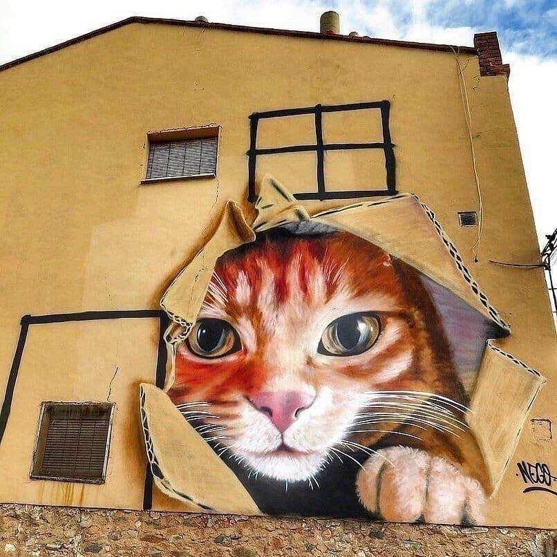 Прикольные картинки на стенку дома, сестре
