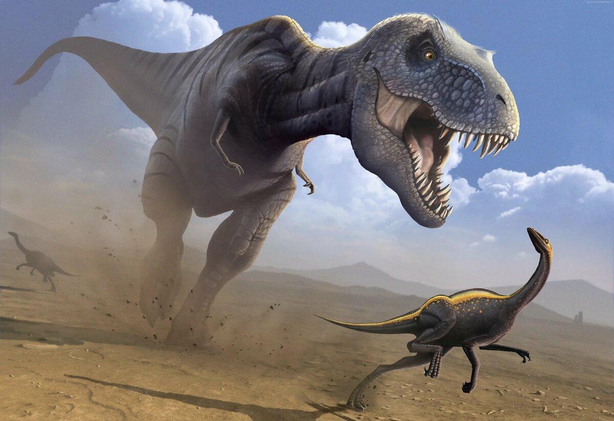 его жены, тиранозавры смотреть картинки его родной школе