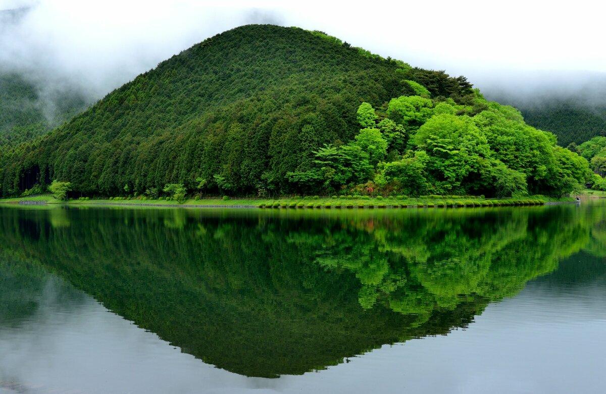 Дня картинка, картинки на рабочий стол зеленая природа