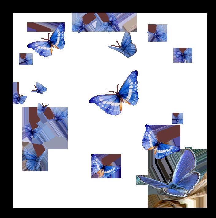 Картинки с летящей бабочкой анимация