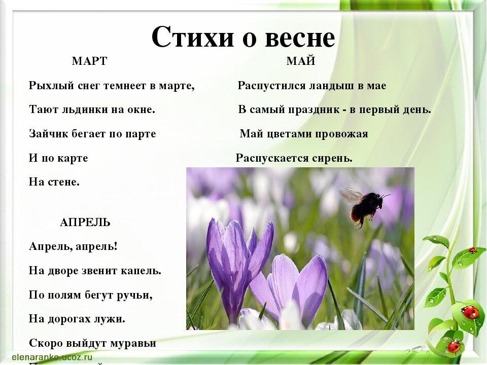даже стих про весну на картинке подробнее ветераны