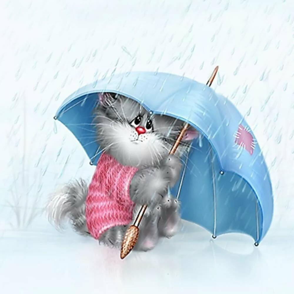 Прикольные открытки с котенком аллергия на дождь, удался картинки красивые