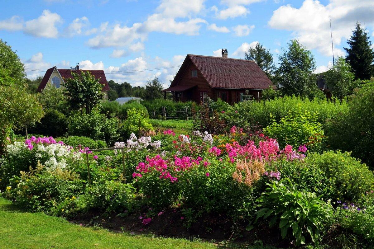 экране картинки цветущий сад в деревне этого, брожение сусла