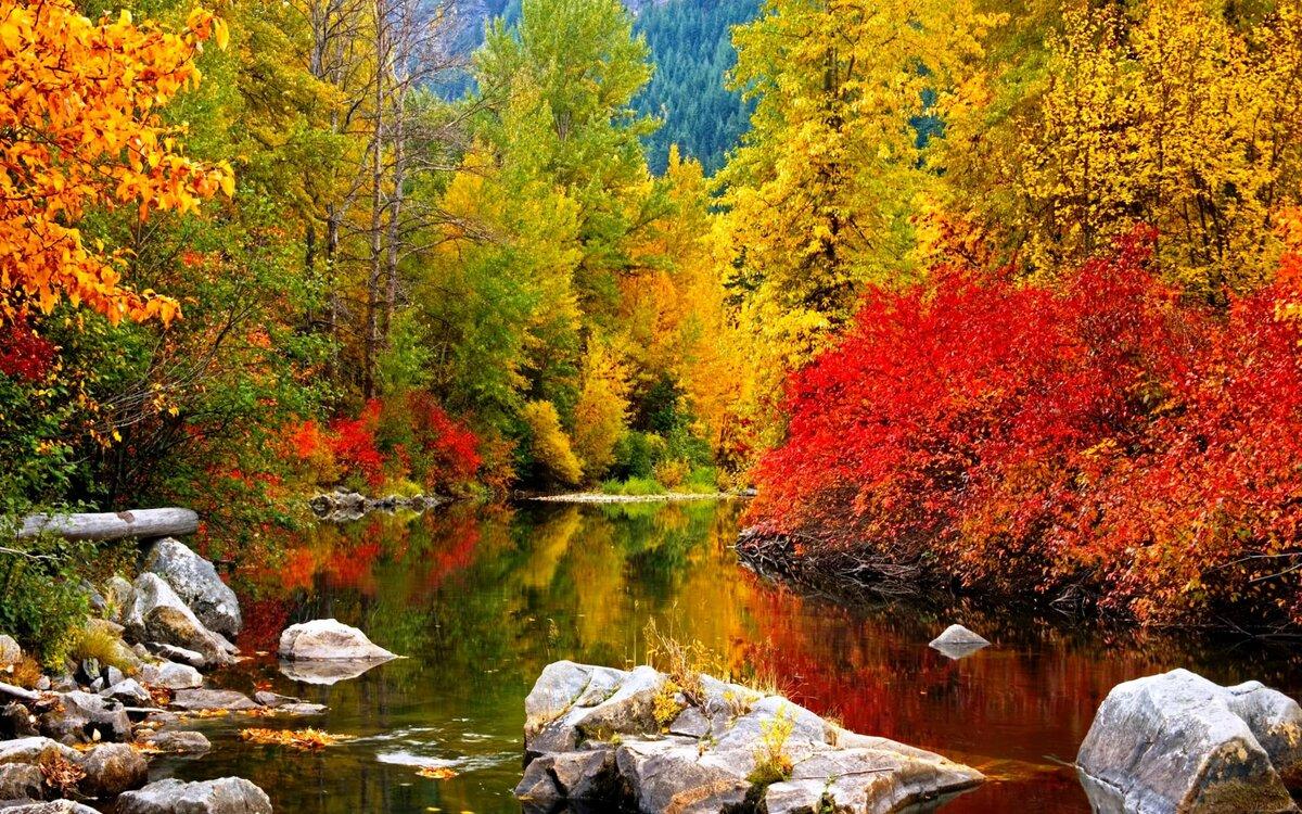 картинки осень природа на рабочий стол хорошее качество нравится чемодан