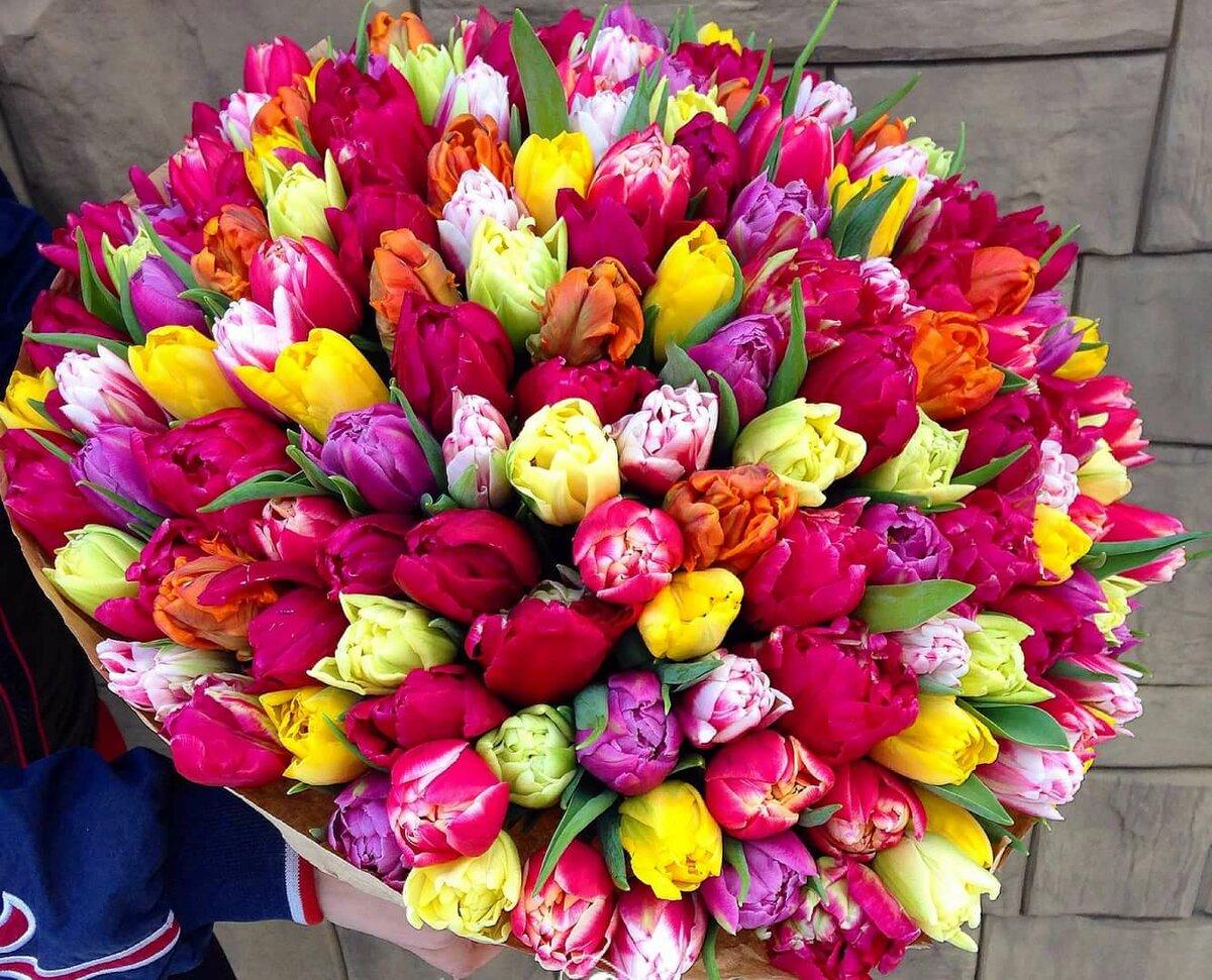 картинки с большими букетами тюльпанов художница