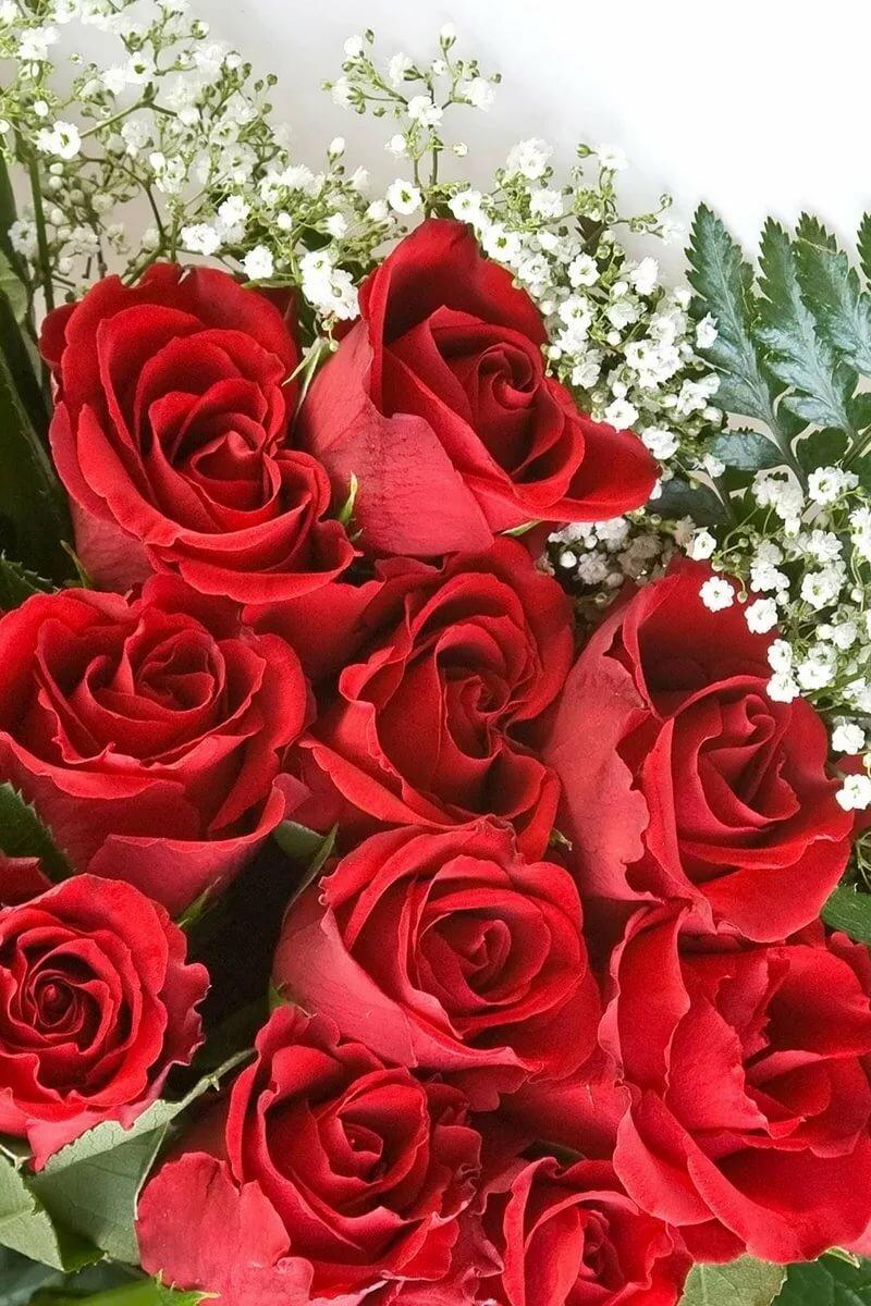 Открытки, картинки цветы с юбилеем 55 лет
