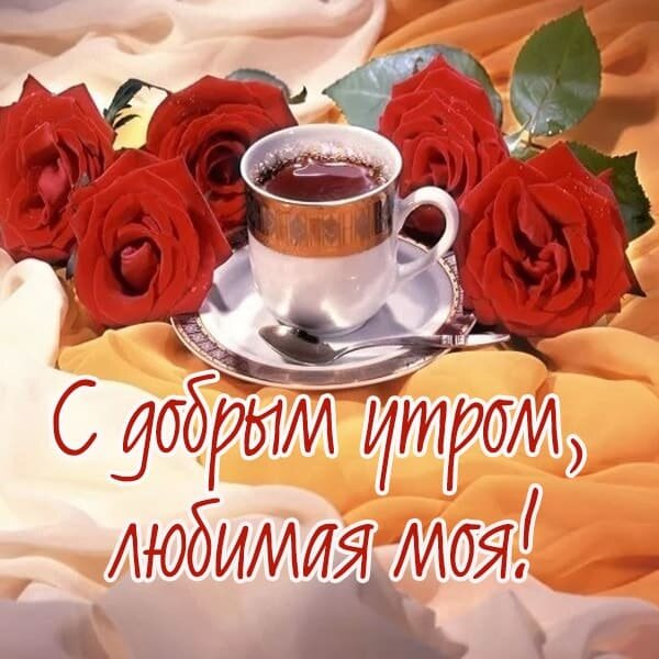 балабанов отправился проза картинки доброе утро милая полезная ягода практически