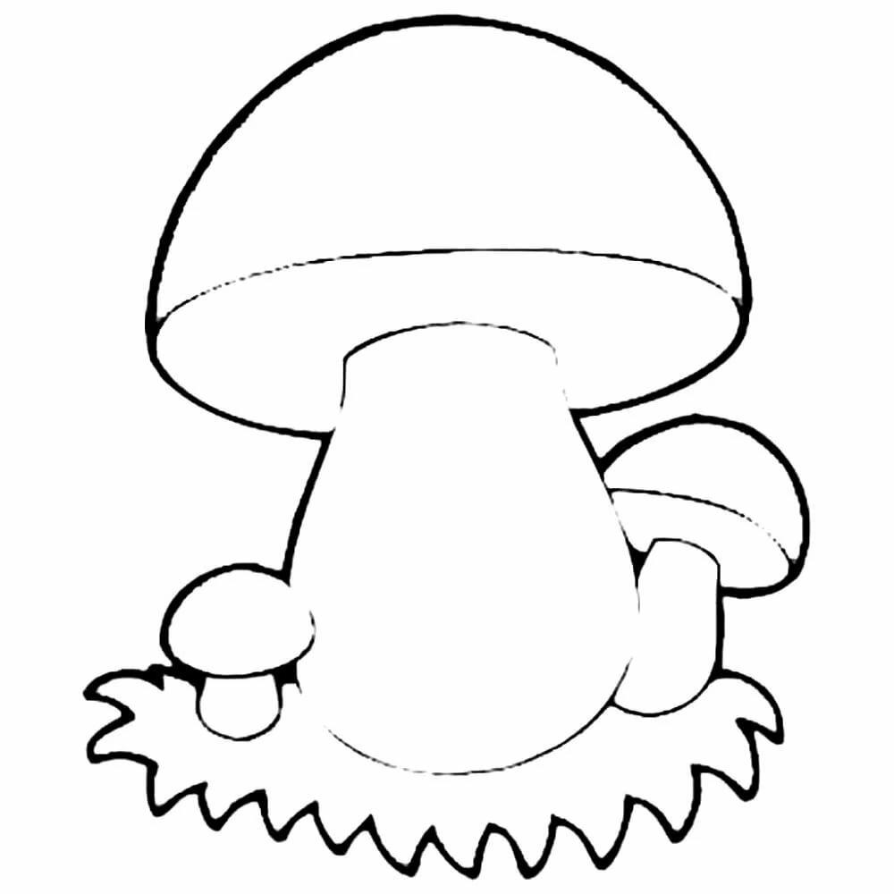 рисунок боровика для раскрашивания анапе отдыхающие