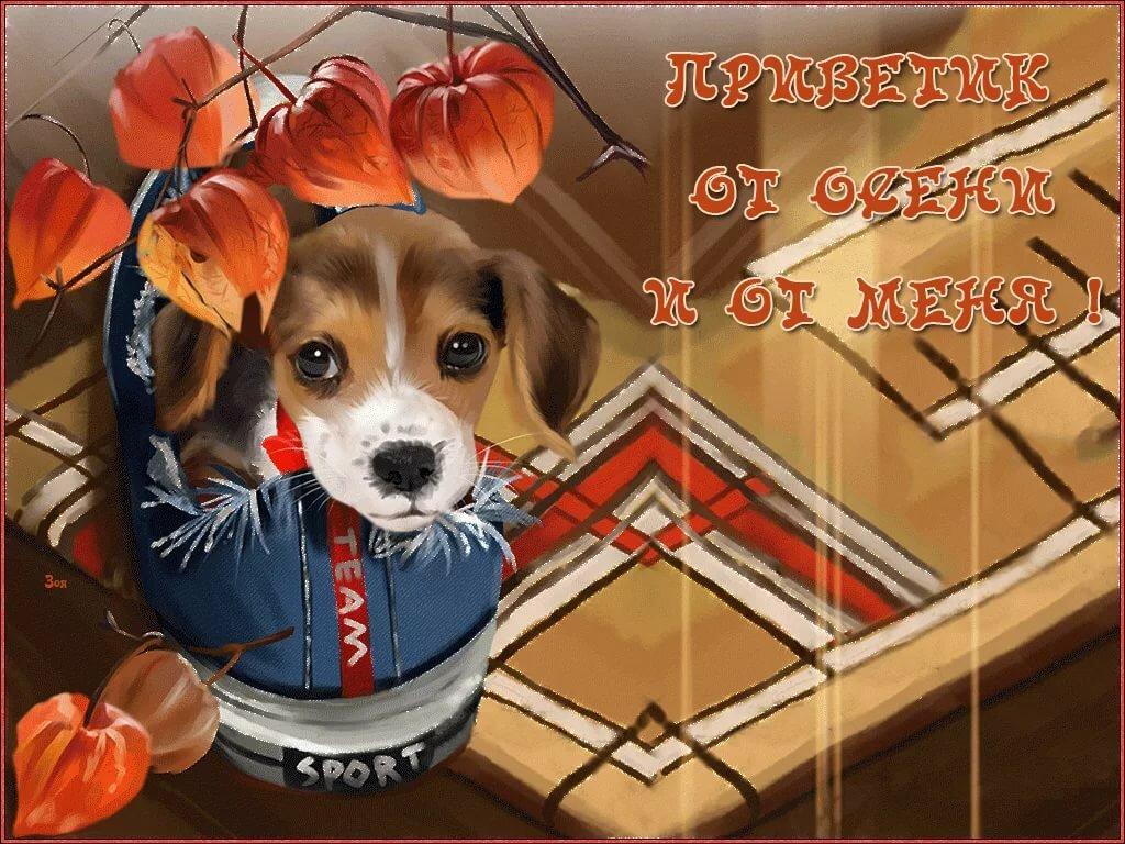 Новинка открытки для друзей, соболезнования поводу