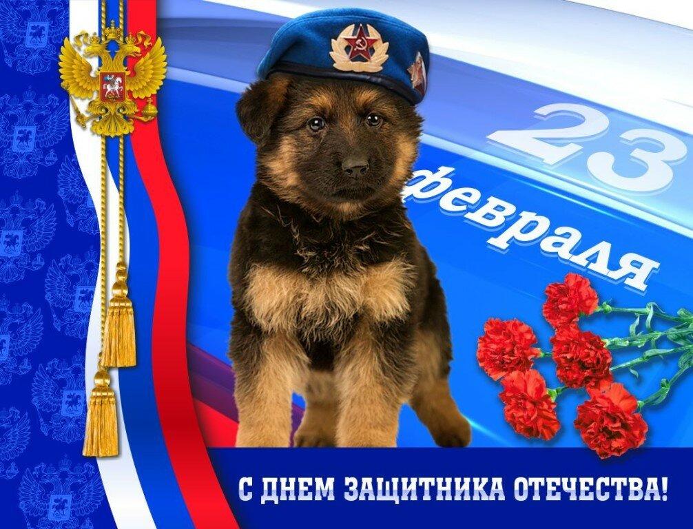 23 февраля картинки поздравления пограничник, картинки