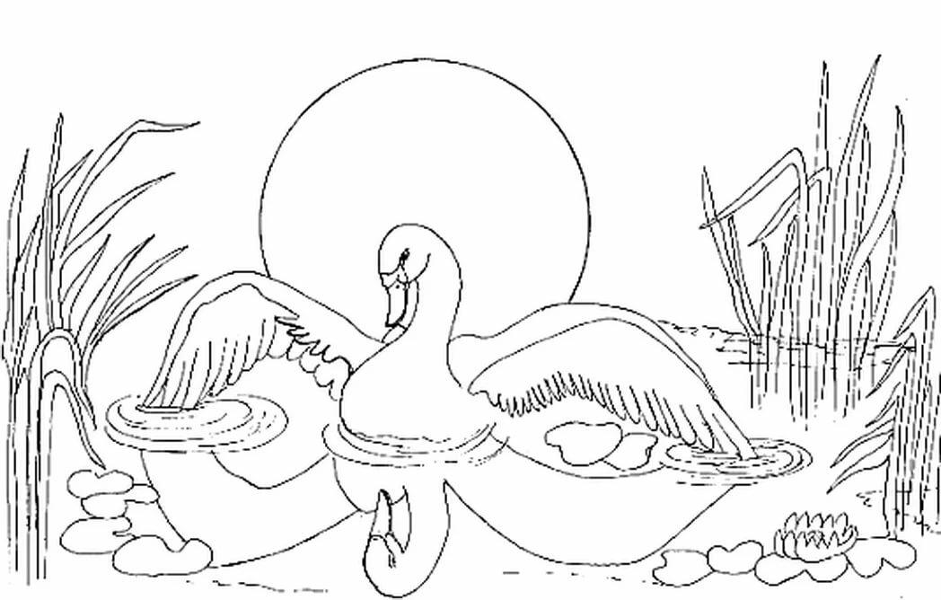 картинки к сказке гадкий утенок рисовать рисовали любимый