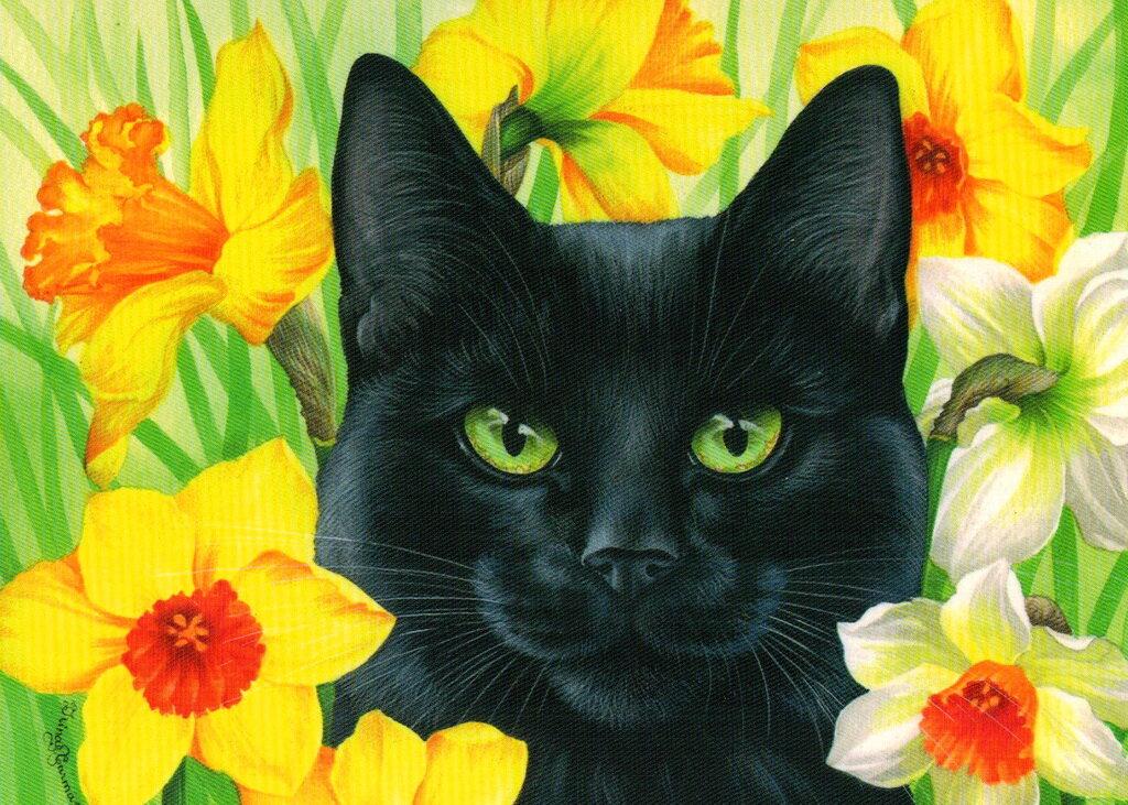 Открытки черные коты, пасхе для