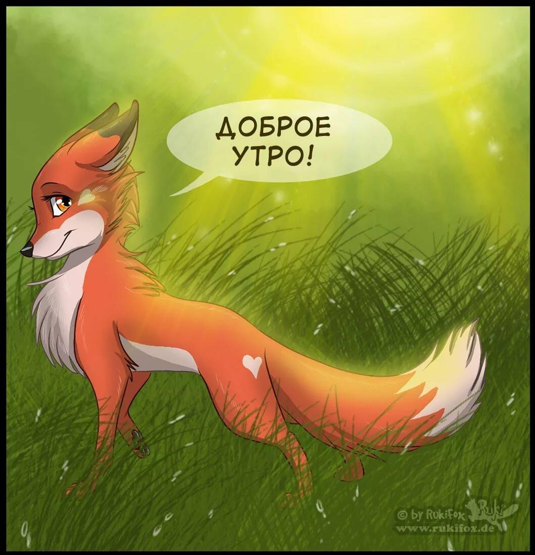 картинки с лисицами доброе утро