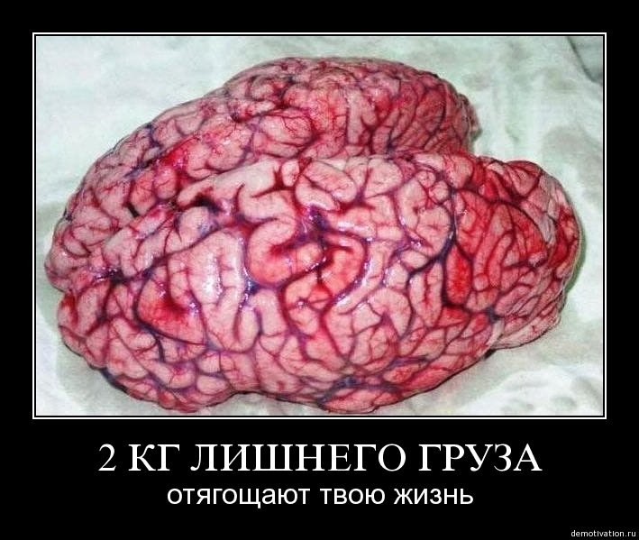 Святого, приколы про мозг в картинках