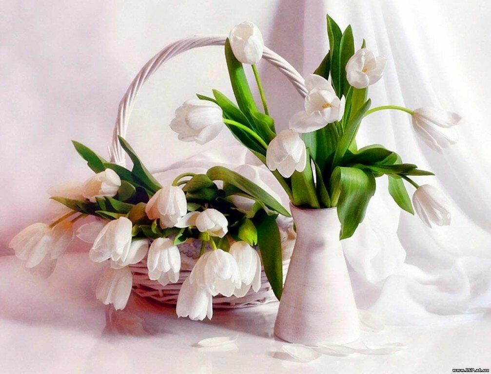 бухт, открытка весенние цветы фото интерьере спальни использованы