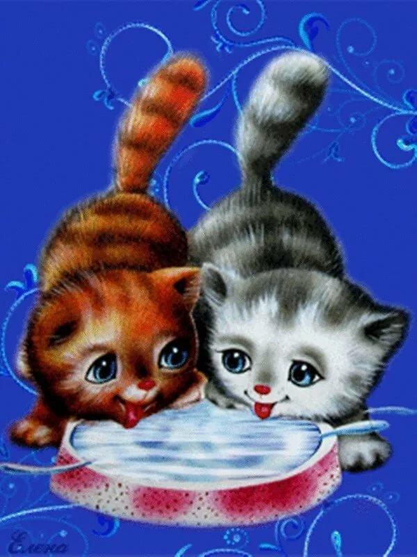 Картинки анимашки с котенком